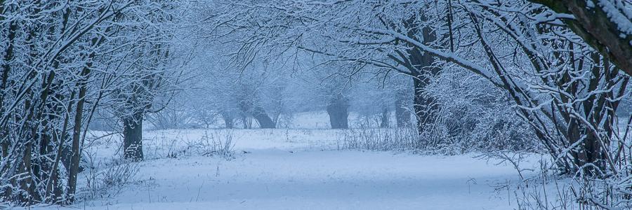 Een winterse blik