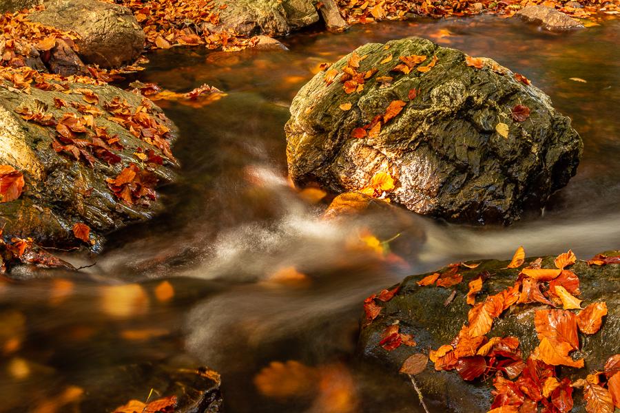 Een steen in het water, La Hoegne