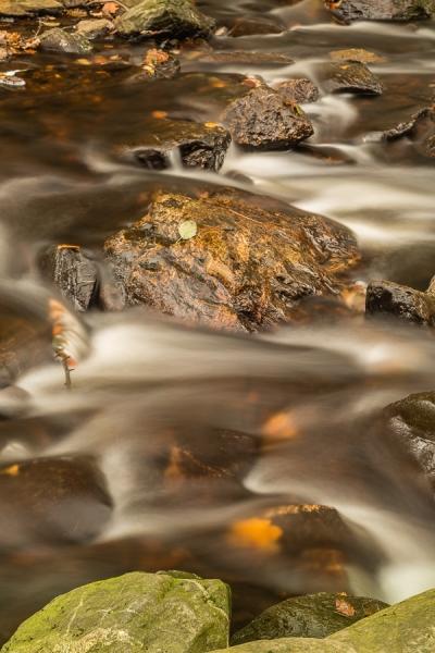 De flow van de Herfst, La Hoegne
