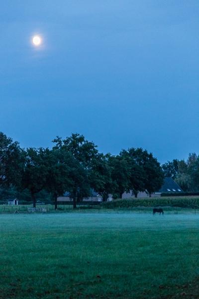 Volle maan over de weide, Berkel-Enschot