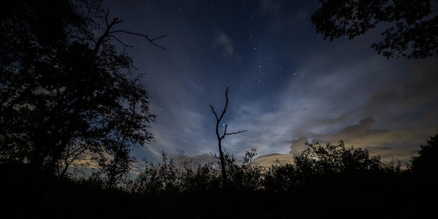 Een nachtelijke hemelwijzer
