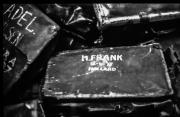 M Frank