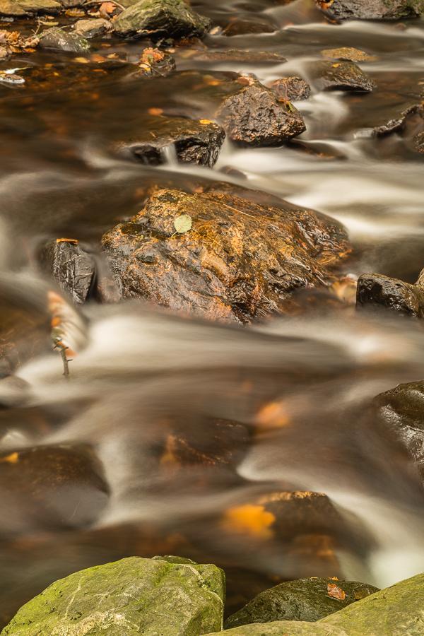 flow van de herfst
