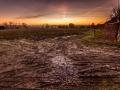 Verlaten boomgaard, Honthem