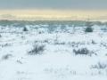 Sneeuw op de Venen, Baraque Michel
