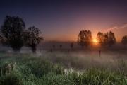 Zonsopgang in de mist (De Keuzemeersen, Gent)