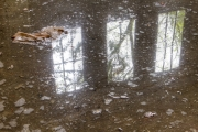 Reflections of decay II