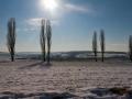 Sneeuw en zon in het Geuldal