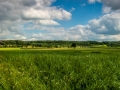 Zomers panorama, Vroendaal