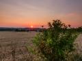 Late zomer, Eyserlinde