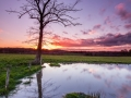 Waterdans, Landsrade