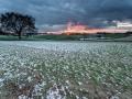 05011701 - lichte sneeuw, Honthem