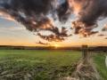 05020801 - Waaiende wolken, Eyserlinde
