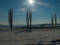 Een winters Heuvelland panorama (Geuldal, Heuvelland)