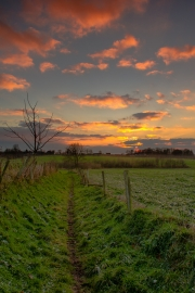 Pad naar de ondergaande zon, Honthem