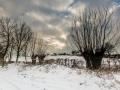 Winterlandschap, Honthem
