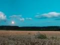 Tarwe bij volle maan, Vroenhoven