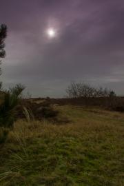 01021602 - Zon, mist en duinen, De Slufter