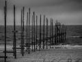 01021601 - Naar de zee, De Cockdorp