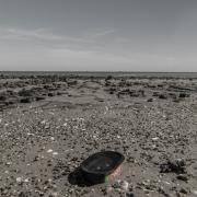 0402003 - Mora op de Wadden
