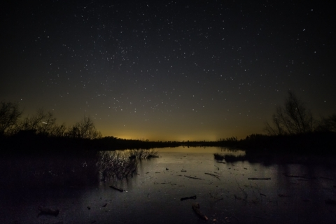 De donkere Groote Peel