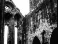 Ruines, Glendalough Abby